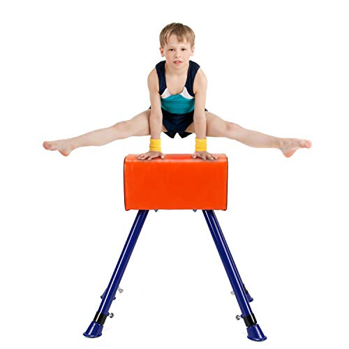 Artoflifer Junior Pommel Horse...